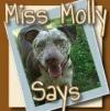 @missmollysays