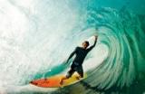 Surfing & Surfwear