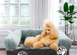 Luxe Pets  influencer marketing campaign