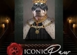 Iconic Paw influencer marketing campaign